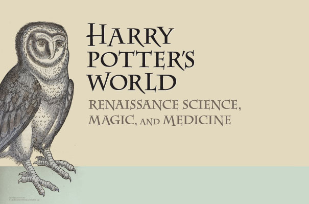 Harry Potter's World letterhead with owl