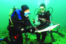 Scuba divers doing coral research