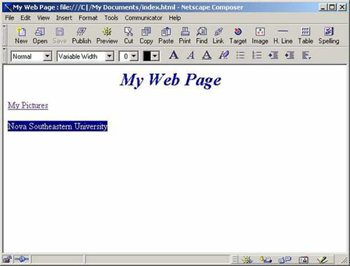 Netscape 4.7 Composer External Link Text