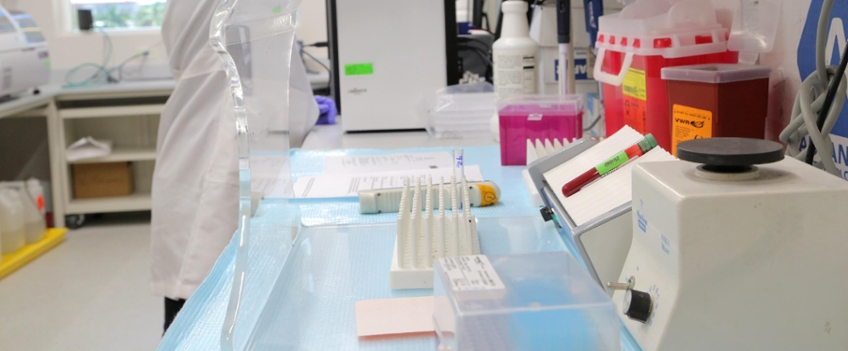 E M  Papper Laboratory of Clinical Immunology | Institute