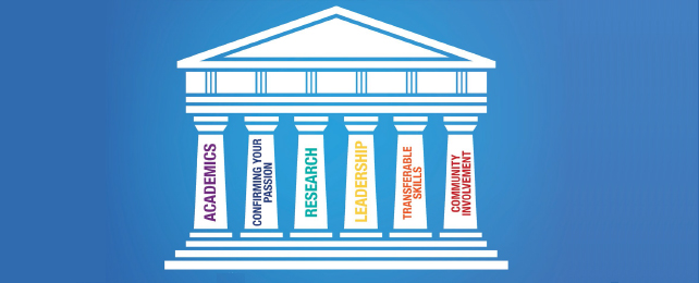 six pillars to get into professional school