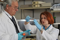 NSU's College of Pharmacy professors Jean Latimer, Ph.D., (right) and Stephen Grant, Ph.D., (left) examine breast cancer cells in their laboratory.