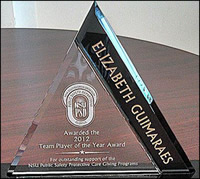 Photo: Team Player of the Year Award plaque