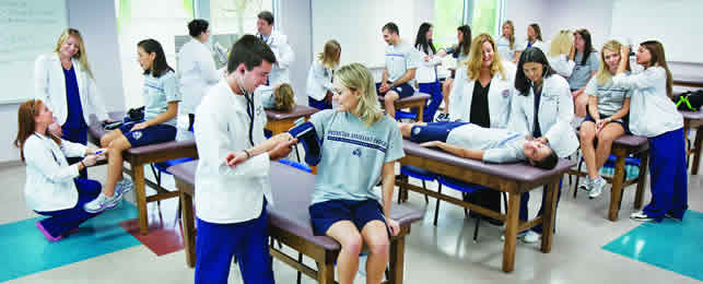 Physician Assistant Dual Admission Program